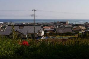 Otohama_aki
